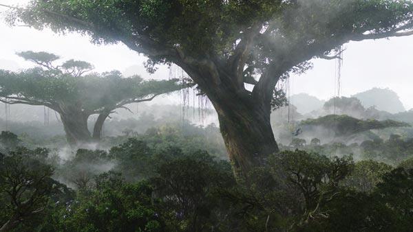 hometree